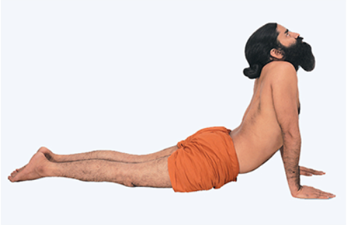 cobra pose yoga in hindi