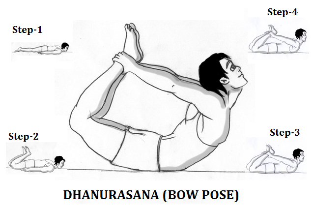 धनुरासन की सम्पूर्ण जानकारी – Dhanurasana Yoga (The Bow Pose) Guide