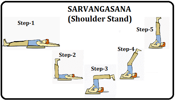सर्वांगासन योग – Sarvangasana Yoga
