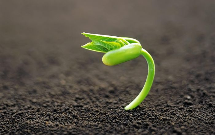 Attitude Status in Hindi That Will Inspire Your Life – नजरिये में बदलाव से, बदल सकती है आपकी जिंदगी !